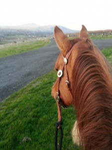 Evening Ride to Freddy's Knoll